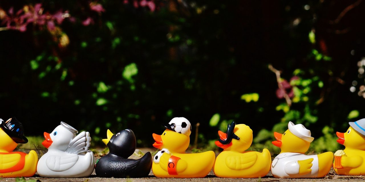 Confession: My Ducks Are Not In A Row